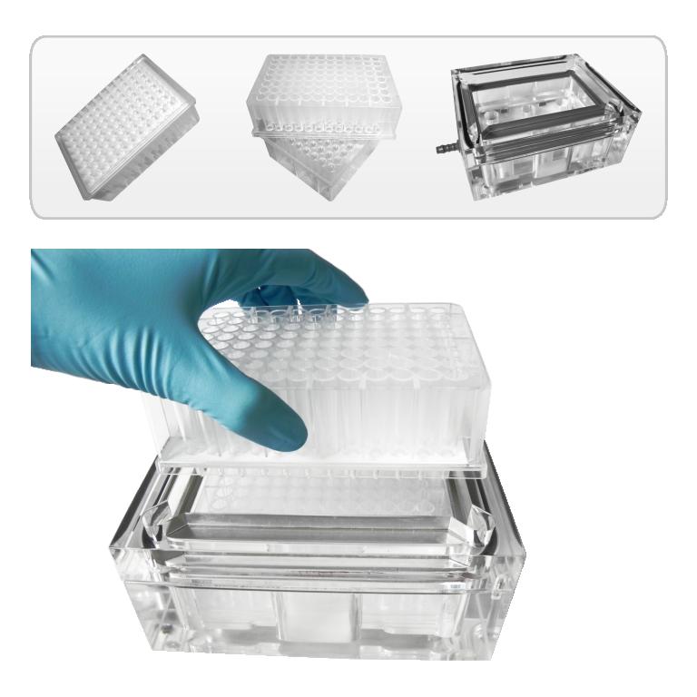 Mikrofilterplatten