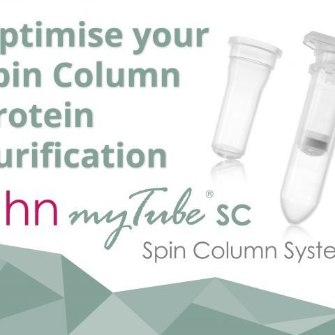 spin column protein purification