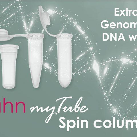 genomic DNA extraction