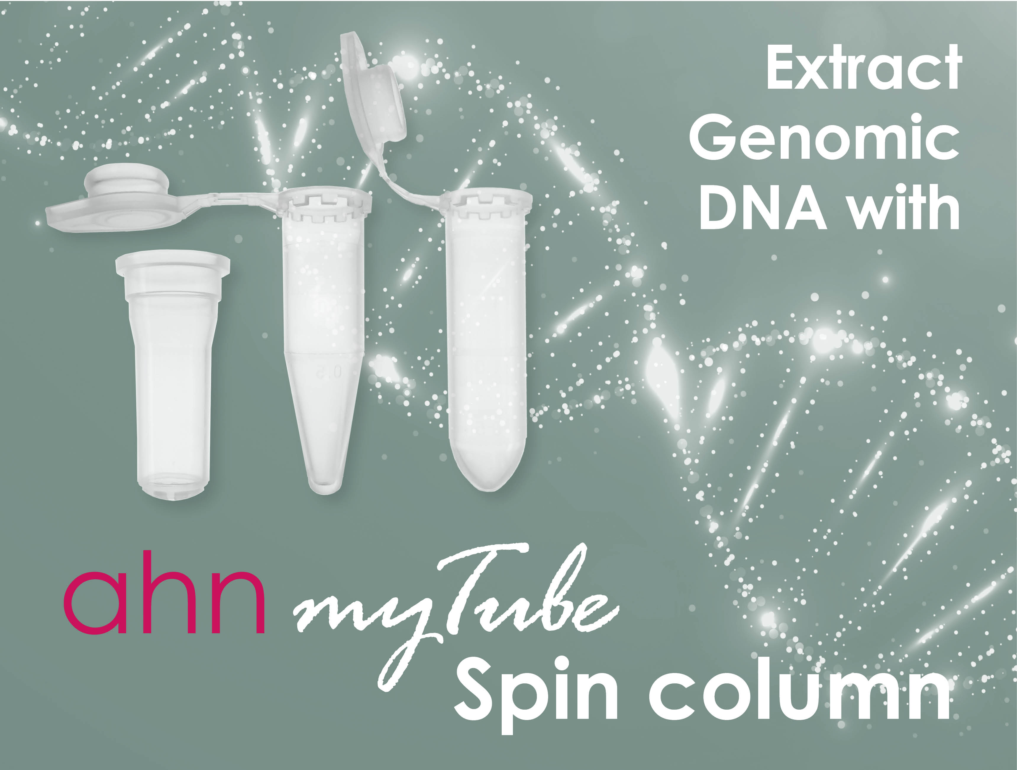 genomic DNA extraction